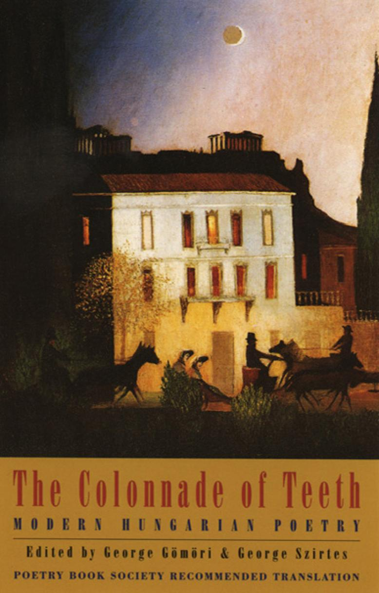 george-szirtes-the-colonnade-of-teeth.jpg