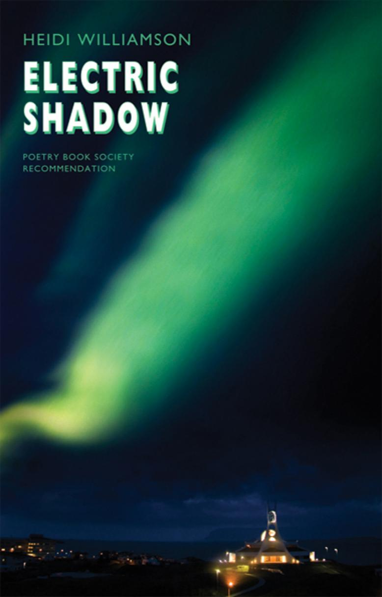 heidi-williamson-electric-shadow