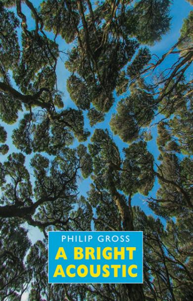 philip-gross-a-bright-acoustic
