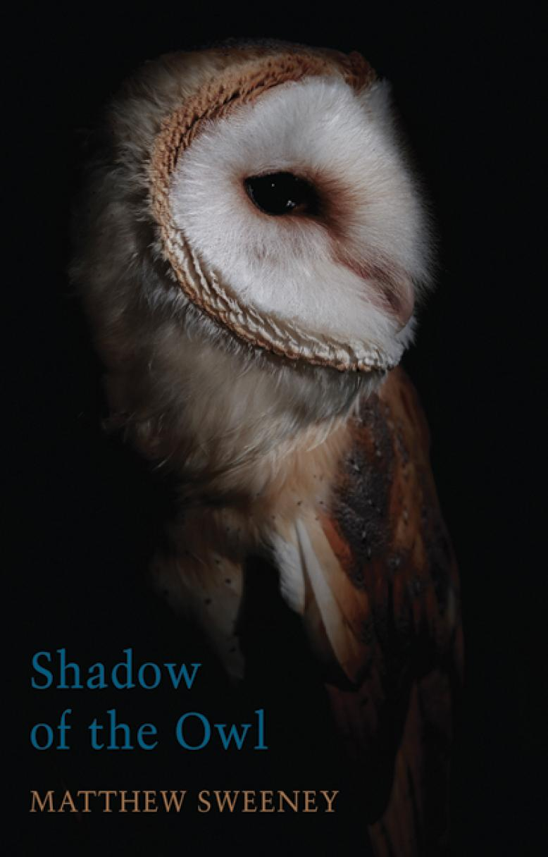 matthew-sweeney-shadow-of-the-owl