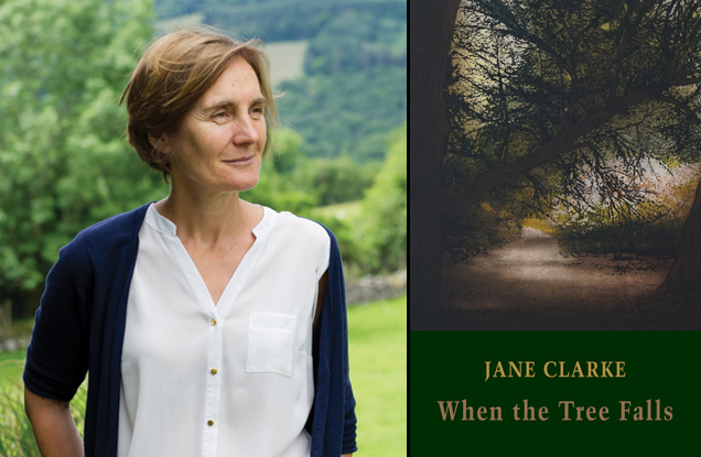 Jane Clarke interviews, books of the year & poem features